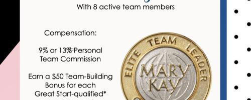 A New Level: Elite Team Leader